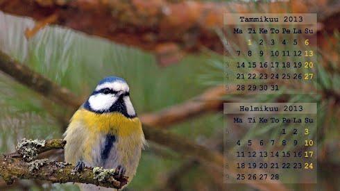Taustakuvat, kalenteri tammi- helmikuu 2013