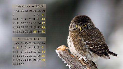 Taustakuvat, kalenteri Maalis- huhtikuu 2013