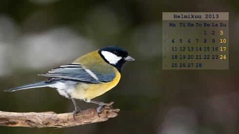 Helmikuun 2013 kalenteritaustakuva